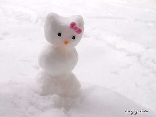 Hello Snow Kitty?